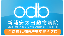 新浦安太田動物病院